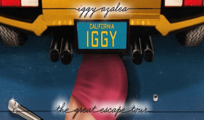 Iggy-web-660-x-360.jpg
